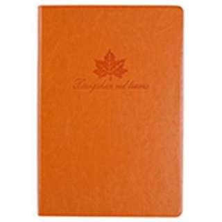 Buku catatan / Diary