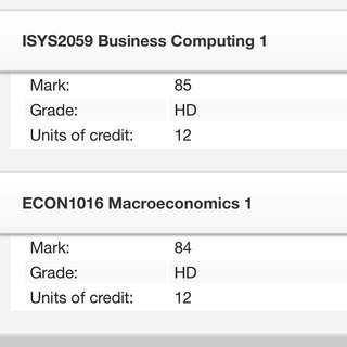 ISYS 2059 Business Computing RMIT Notes