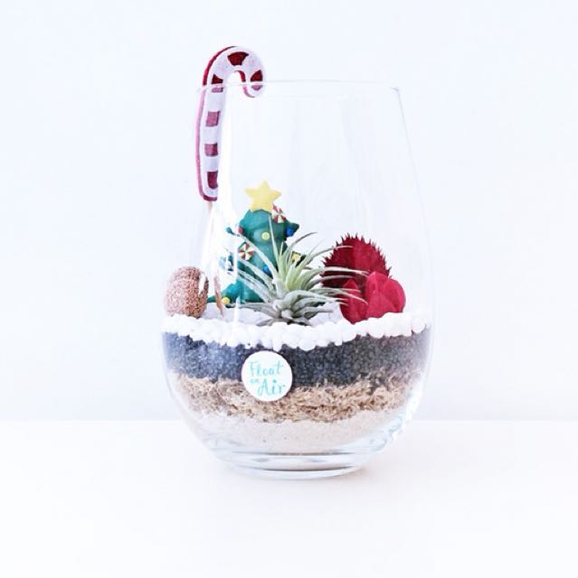 Aerium: Jolly with air plant and preserved flowers