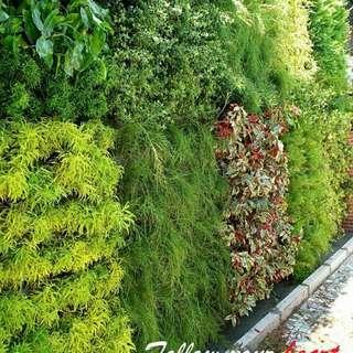fertikal garden