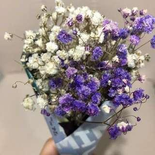 Medium dried flowers bouquet baby breath