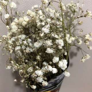 Medium baby breath bouquet
