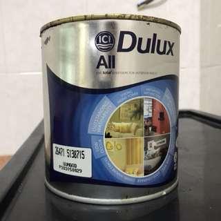 Dulux all paint