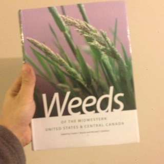UOG Ridgetown Hort Textbook 3rd semester