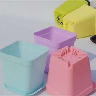 #1212Yes Mini Pastel Flower Pots With Plates Buy 5 Get 1 Free