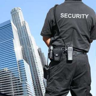 Career in security