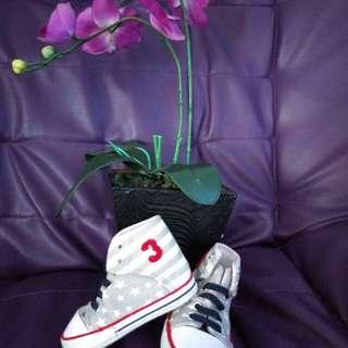 Baby shoes(Disney baby)