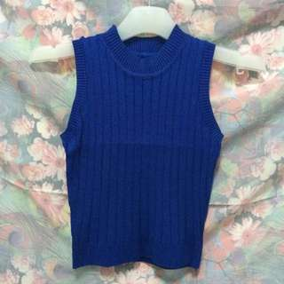 New High Neck Ribbed Knitted Crop Top in Blue
