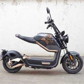 Electric Scooter or Electric Motorcycle