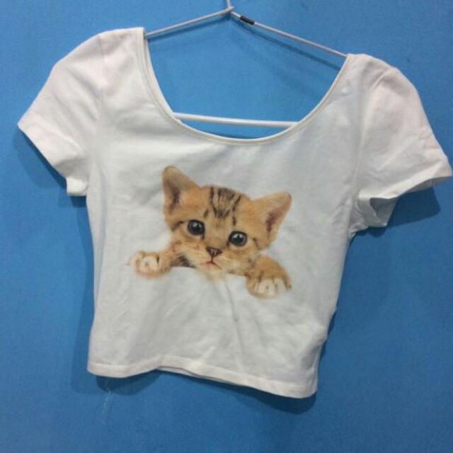 H&m Crop Top Atasan H&m Pattern Cat