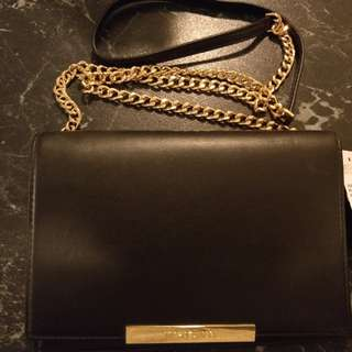 Michael Kors Wallet on Chain / Clutch (NEW)