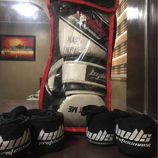 Bulls Boxing Gloves Professional