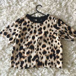 Topshop Leopard Print Crepe Top In Size 6