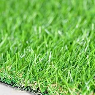carpet grass / turf premium quality