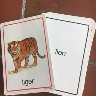 25 pieces of children animals flash cards