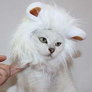 Cat mane (white)