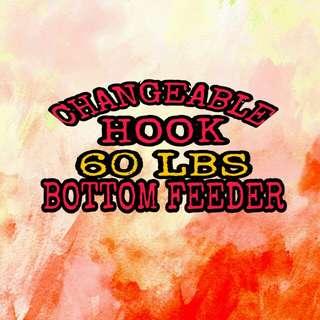 Changeable Bottom Feeder Rig
