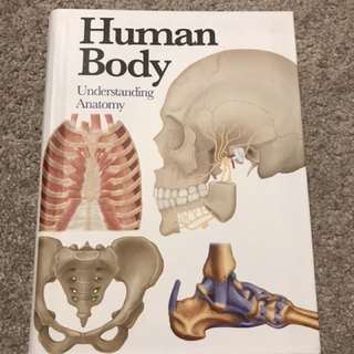 Brand new Human Body: Understanding Anatomy mini encyclopedia