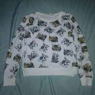 Cropped kitty pullover