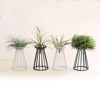 Air plant stand(not include plant)