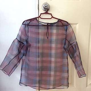 Zara Sheer Organza Top (XS)