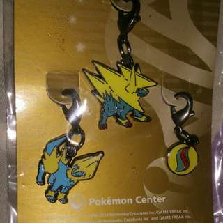 Manectric charms