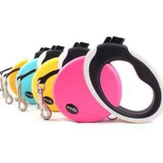 Dog Leash with different colors