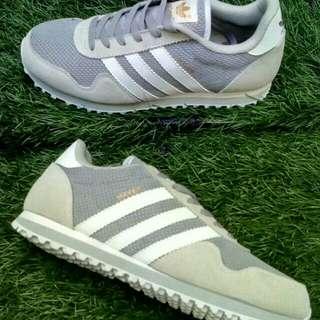 Adidas running HAVEN