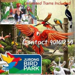Bird Park                               Birk Park Birk Park Bird Park Bird Park Bird Park Bird Park Bird Park Bird Park Bird Park Bird Park Bird Park Bird Park Bird Park