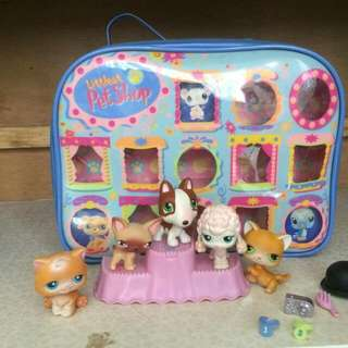 My Littelest Pet Shop Set