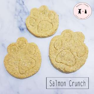 Homemade Salmon Crunch for Dogs & Cats