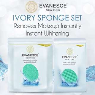 Evanesce Sponge face & Body