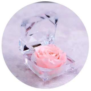 Special Preserved Rose Flower in Acrylic Crystal Box