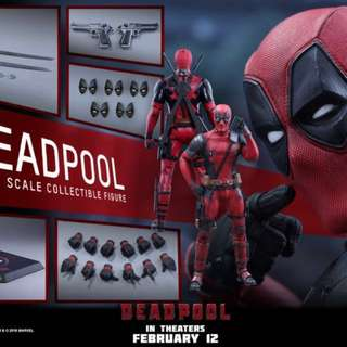 Hot Toys : Deadpool 1/6th scale collectible figure