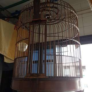 16 Inch Hwee Bee cage