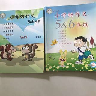 Pri 5/6 Chinese composition books