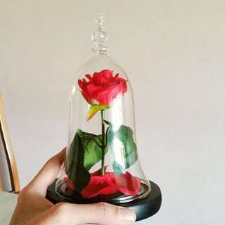 Beauty and the beast enchanted rose preserved rose glass dome bell jar girlfriend gift anniversary gift girlfriend present couple gift birthday gift bff gift