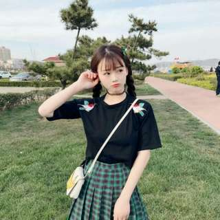 (PO) korean Embroidery Short Sleeve Top