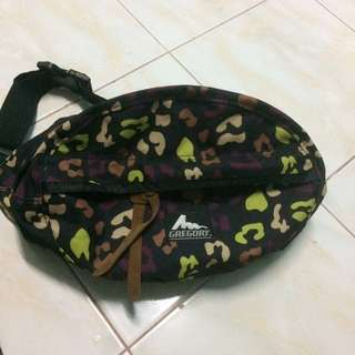 Gregory Pouch bag