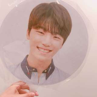 SEVENTEEN DINO official picket