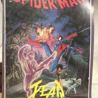 Spiderman Graphic Novel Comic