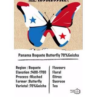 烘焙咖啡豆 - Panama Boquete Butterfly 巴拿馬花蝴蝶70%藝伎