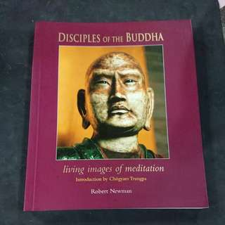 Disciples of the Buddha - Robert Newman (color picture book)