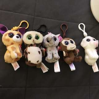 The Beanie Boo'collection