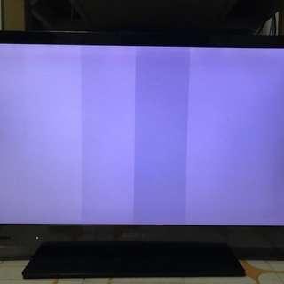 變白色螢幕的32吋 Sony 電視 TV