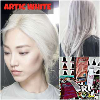 Artic White Hair Dye / Color (NON DAMAGE)
