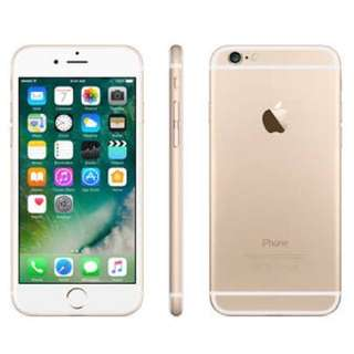iPhone 6 (64gb Gold) with earphone and charger