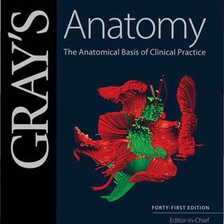 Gray's Anatomy The Anatomical Basis of Clinical Practice [2016]