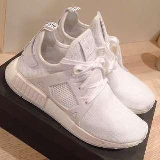 ʕ •ᴥ•ʔ Adidas 限量 排隊 球鞋 三葉草