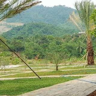 Kavling Produktif Algira Kampung Qurban Bogor